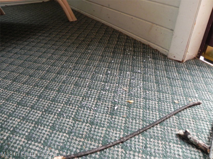 Author's sunroom floor with debris on carpet