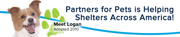 Participating_Shelters_622x128_l