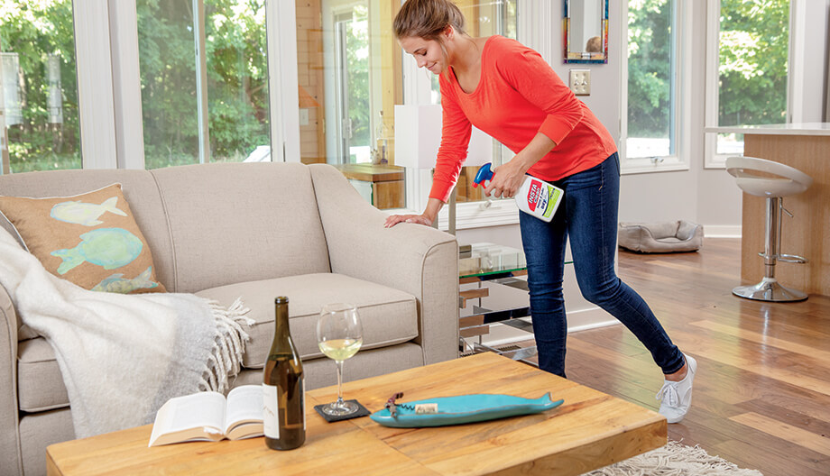 How to Clean Couch Cushions like the Pros