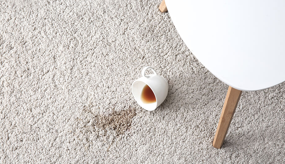 How To Remove Coffee Stains >> How To Remove Coffee Stains From Carpet Bissell Tips