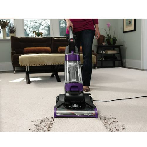 CleanView Plus Vacuum 1334 Cleaning Path