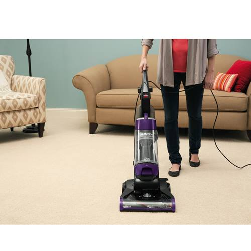 CleanView Plus Vacuum 1334 Upright Carpet Cleaning