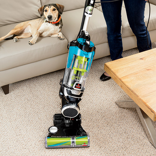 bissell pet hair eraser vacuum 16501 bissell pet vacuum. Black Bedroom Furniture Sets. Home Design Ideas