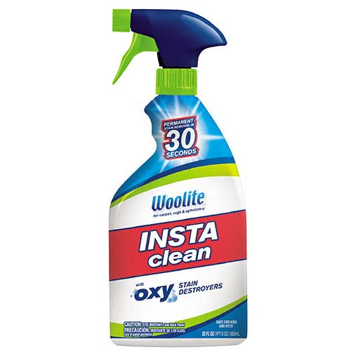 Woolite Instaclean 1742 Front Label