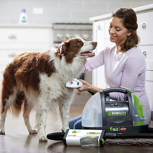portable dog grooming system barkbath 1844a bissell pet grooming. Black Bedroom Furniture Sets. Home Design Ideas