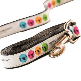 BISSELL Pet Foundation Leash 19524 AdoptBox 2