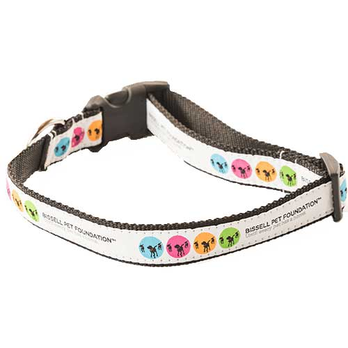 BISSELL Pet Foundation Medium Large Dog Collar 19527 AdoptBox