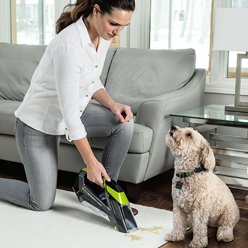Pet Stain Eraser Portable Carpet Cleaners Dog Stains
