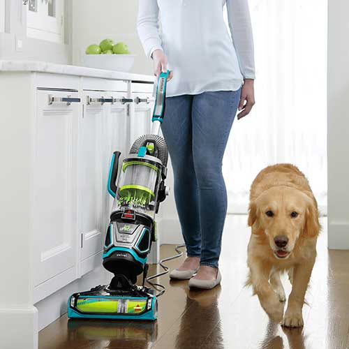 Bissell Pet Hair Eraser Lift Off 2087 Bissell Pet Vacuum