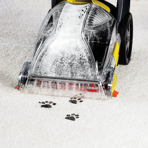 PowerForce PowerBrush 2089 BISSELL Carpet Cleaner Paw Prints