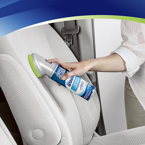Woolite Carpet And Upholstery Cleaner Directions Carpet